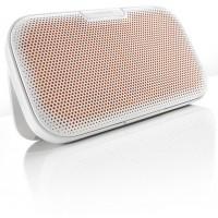 Denon ENVAYA Bluetooth  bevielė nešiojama  garso kolonėlė