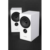 Pylon Audio Opal Monitor lentyninės garso  kolonėlės, kaina už 2 vnt su pristatymu.